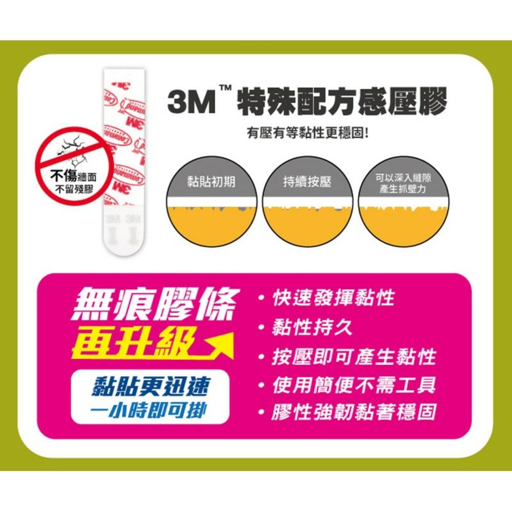 3M 無痕 相框掛鉤系列:鋸齒型17040/繩索型17041