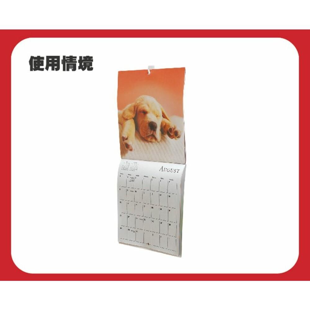 3M 無痕掛鉤系列: 迷你型一般掛勾 月曆掛鉤-象牙白 17011 4入/卡