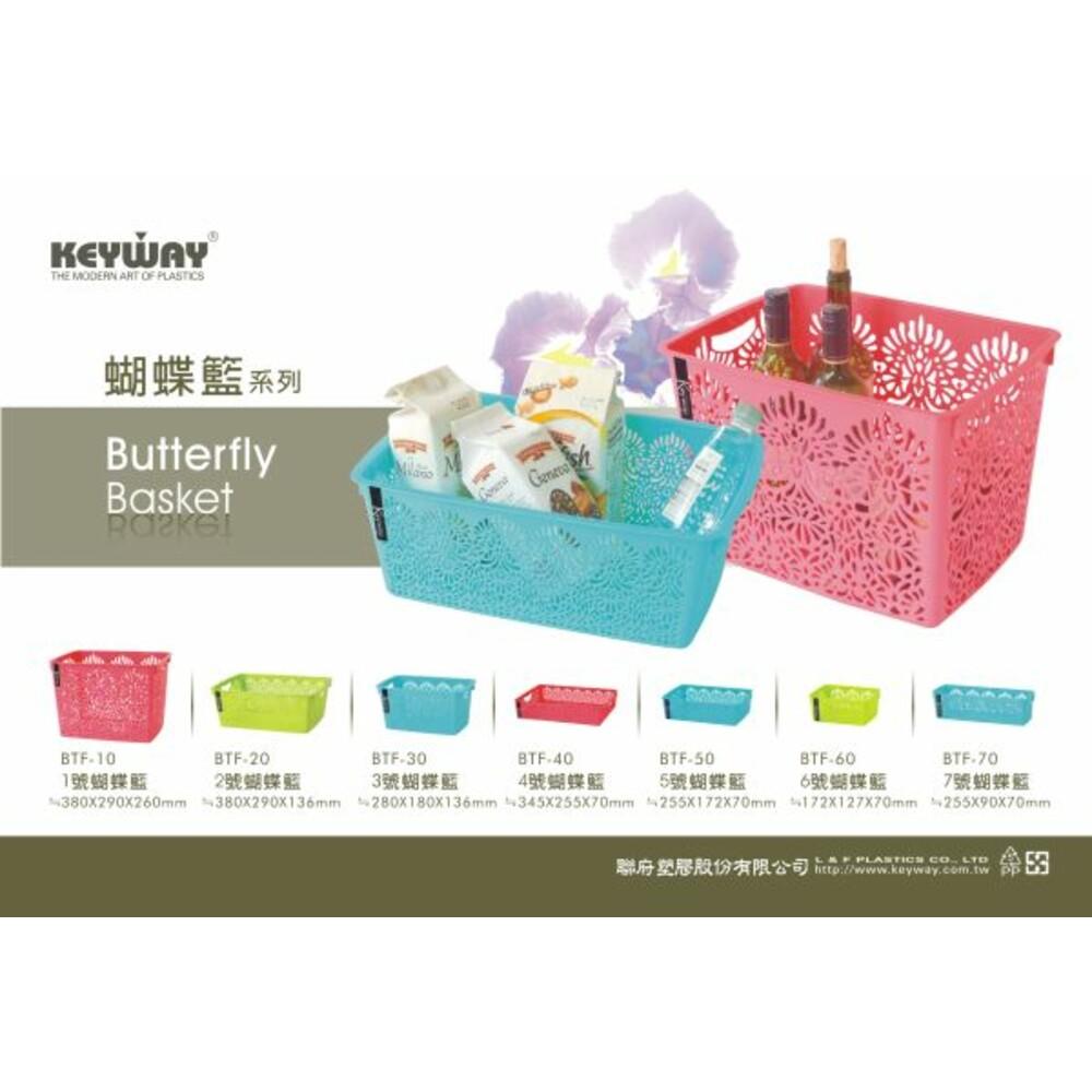 聯府 5號蝴蝶籃 收納籃 置物籃:顏色隨機出貨